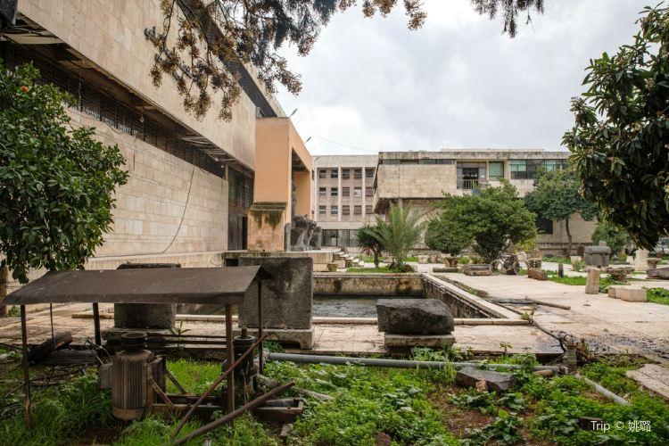 阿裡波博物館1