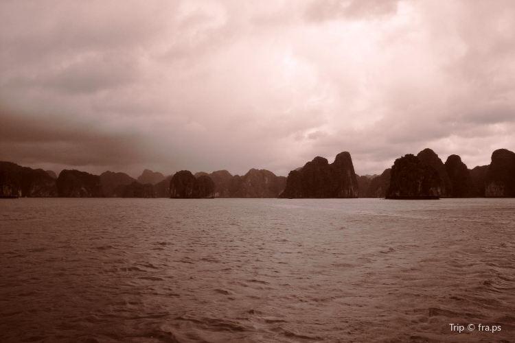 Dragon Bay2