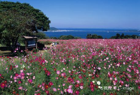 能古島海島公園