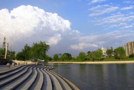 Caofeidian Forest Park