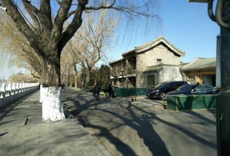 Arding Botanical Garden West Area (North Gate)