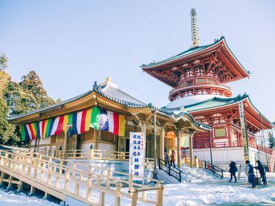 Naritasan Shinsho-ji