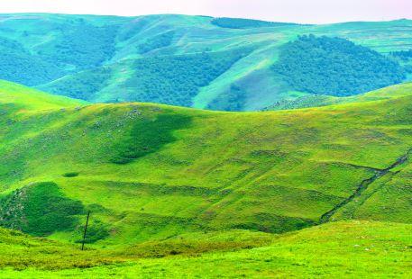 Hadamen National Forest Park
