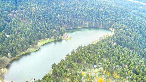 Lake Abant Nature Park