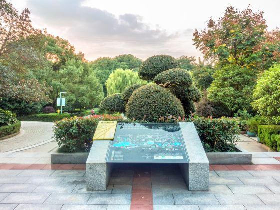 菊花塘公園