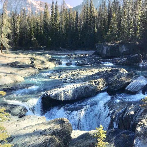 Milk River Natural Area