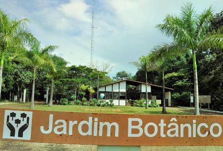 巴西利亞植物園
