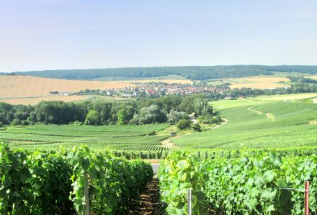 Marne Valley