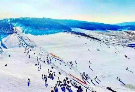葉赫皇家山滑雪滑草場