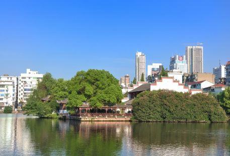 Shui Guan Yin Ting