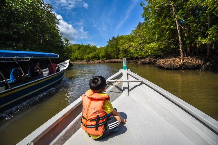 Mangrove Ecological Reserve1