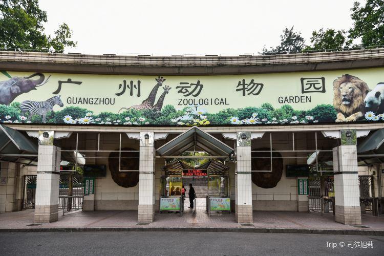 Guangzhou Zoo1