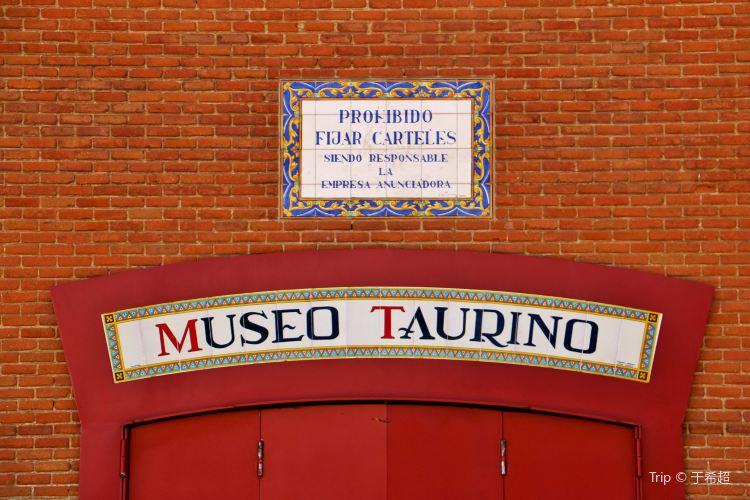 Bullfighting Museum1