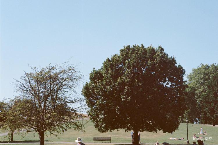 攝政公園2