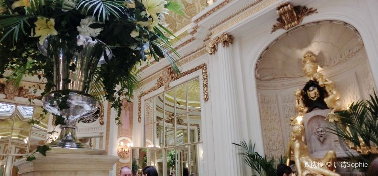 The Palm Court1
