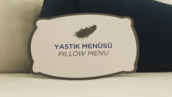 Business Zone, Wyndham Ankara