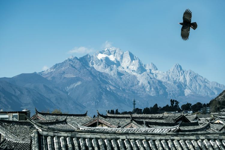 Lijiang Ancient City3