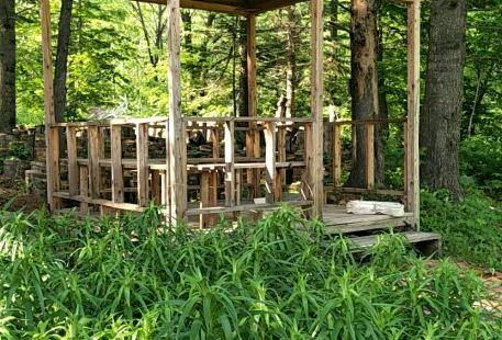 長白山果松森林溫泉度假村
