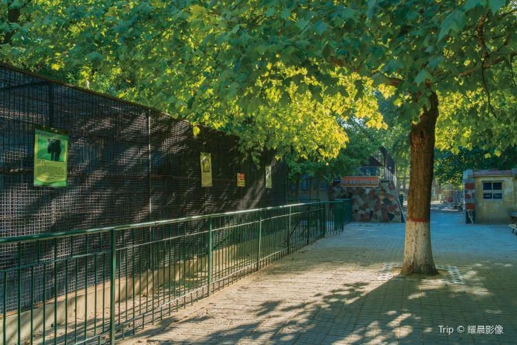 Baoding Zoo1
