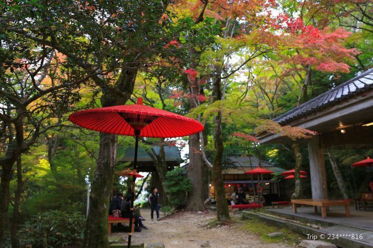 Zuihoji Park2