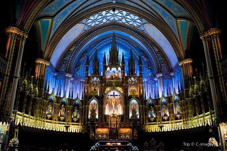 Notre-Dame Basilica3