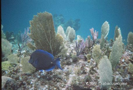 SNUBA Turks and Caicos