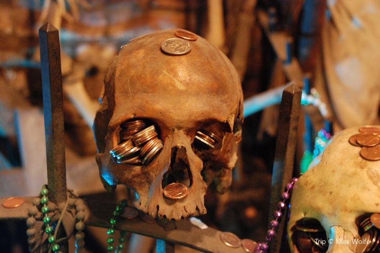 New Orleans Historic Voodoo Museum3