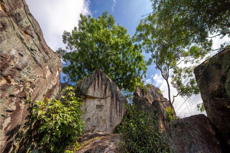 Changtai Gumingyan Scenic Area2