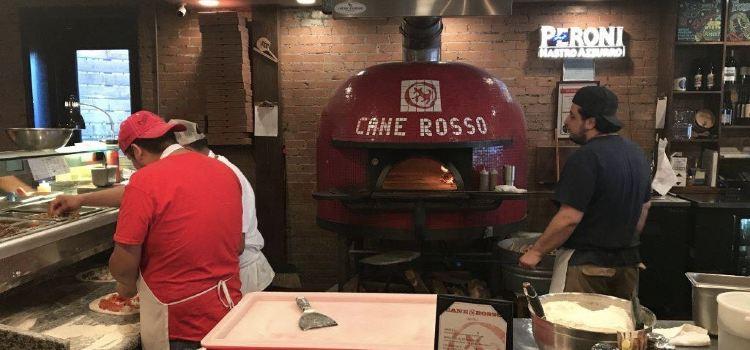 Cane Rosso1