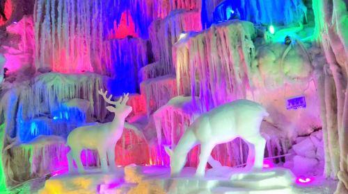 Dragon Palace Wonderland