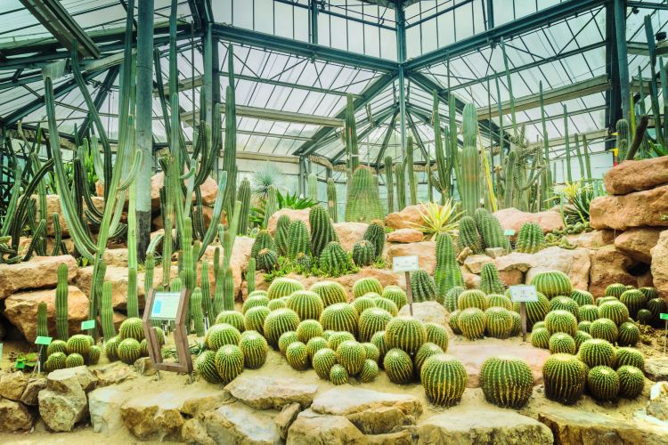 中國科學院華南植物園