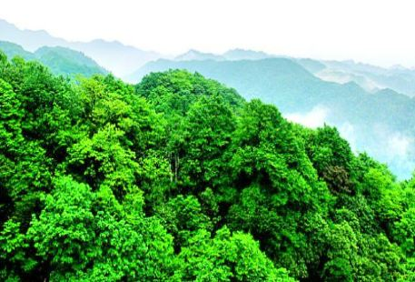 Badagong Mountain Nature Reserve