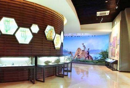 舊石器時代博物館