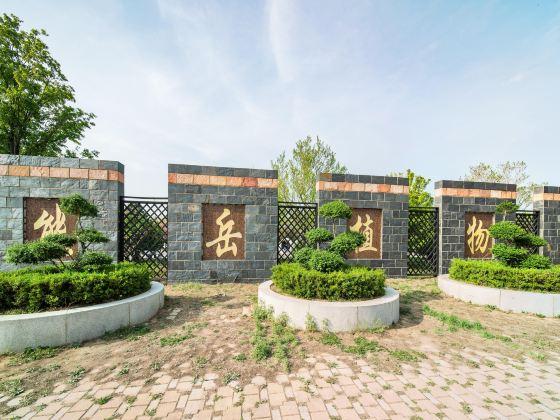 熊嶽植物園