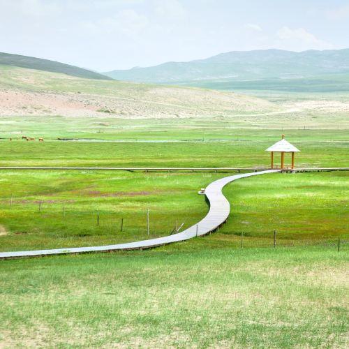 巴裡坤草原