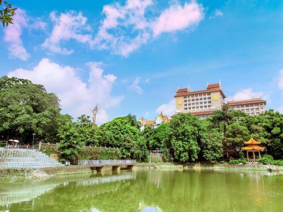 광시민족대학