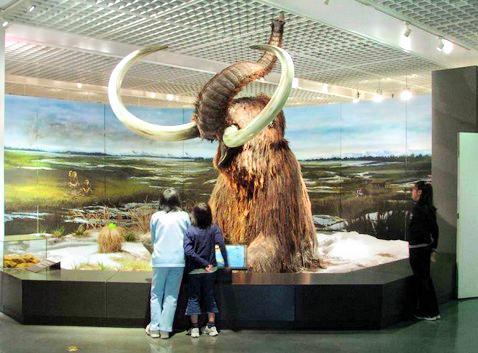 Obihiro Centennial City Museum