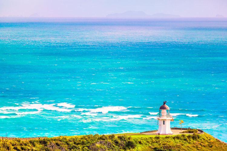 Cape Reinga1