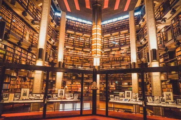 Robarts library2