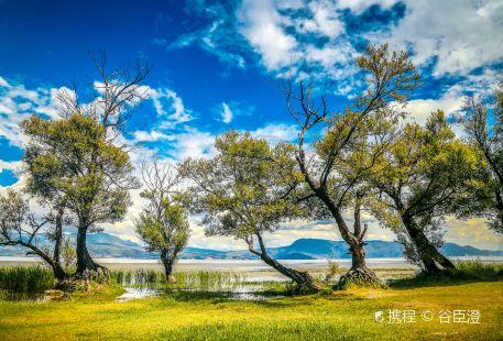 Haishe Ecological Park