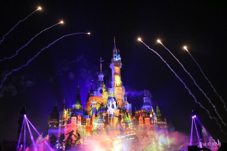 Ignite the Dream - A Nighttime Spectacular of Magic and Light2
