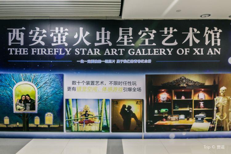 Firefly Starry Sky Art Museum1