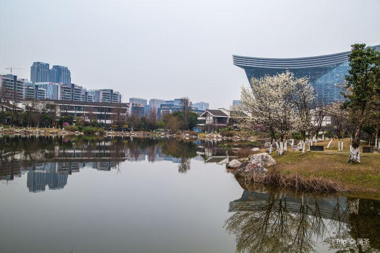 成都錦城公園1