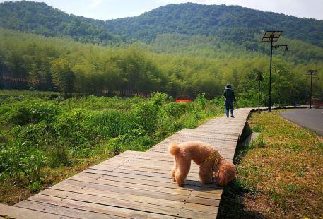 Qiuhu Mountain