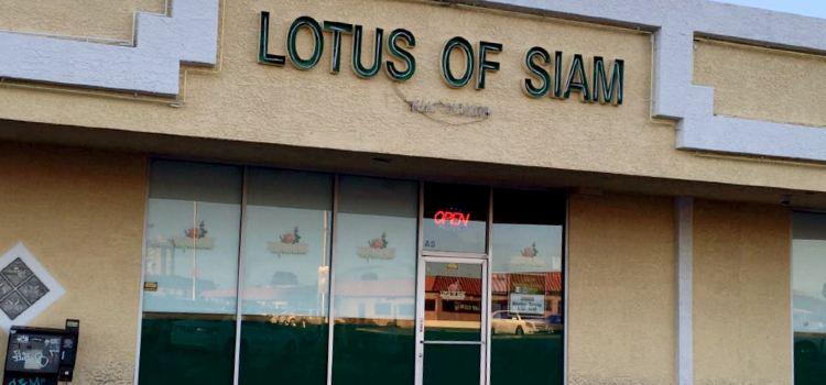 Lotus of Siam