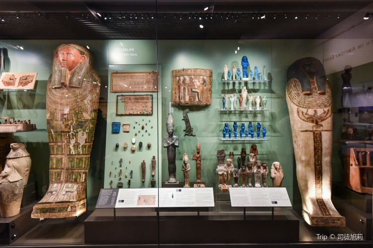 Ashmolean Museum of Art and Archaeology3