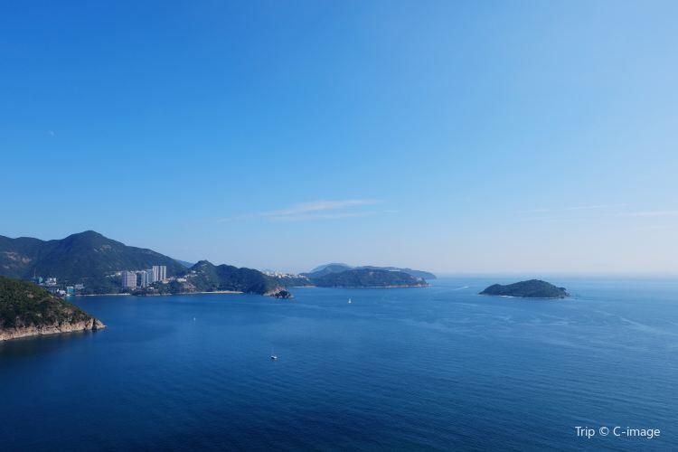 Ocean Park Hong Kong4