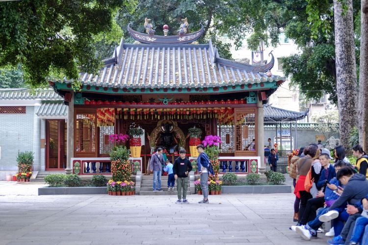 Temple of the Six Banyan Trees3