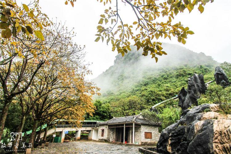 Jade Forest Scenic Area3