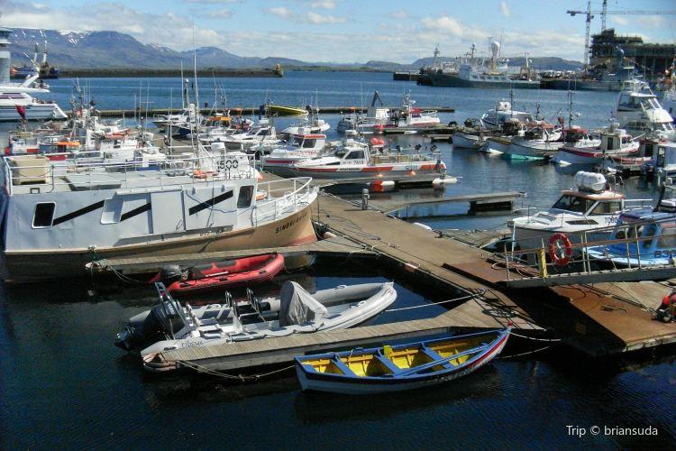 Reykjavik Harbour3